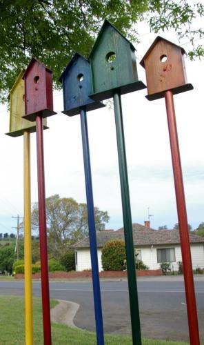 Bird Boxes by David Doyle