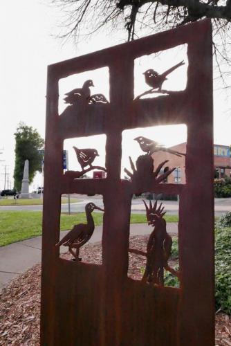 David Doyle - Birds of Neerim South
